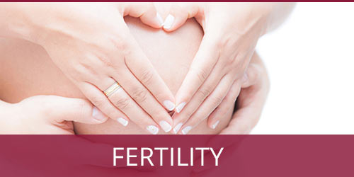 fertility solutions | Annex Naturopathic Doctors Clinic Toronto