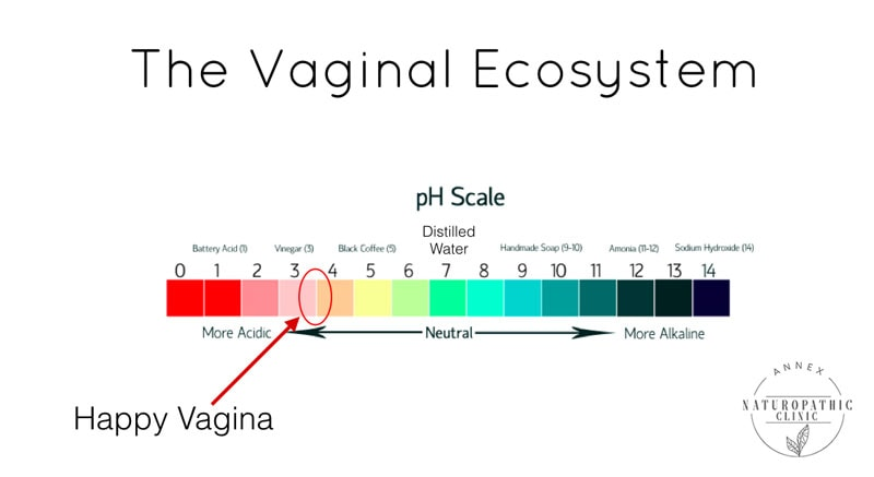 The Vaginal Ecosystem pH Scale | Annex Naturopathic Clinic | Toronto Naturopathic Doctors