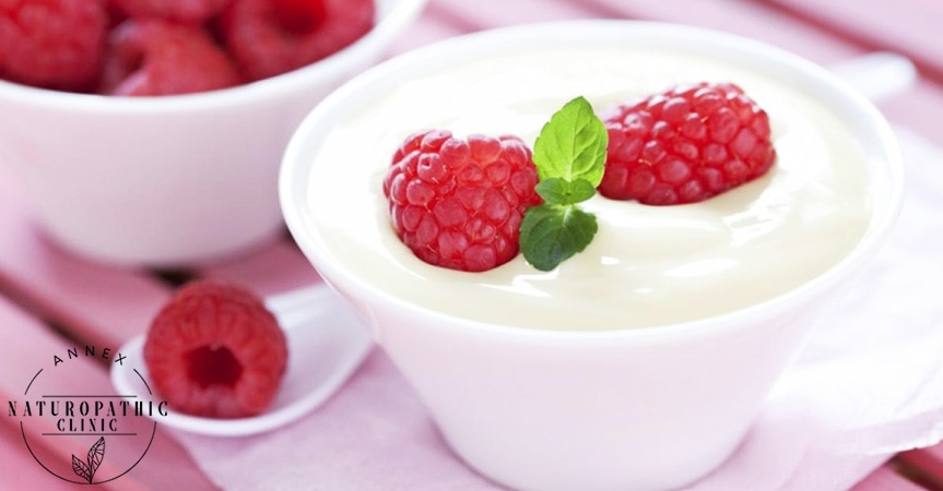 What are probiotics and their importance   Annex Naturopathic Clinic   Toronto Naturopathic Doctors
