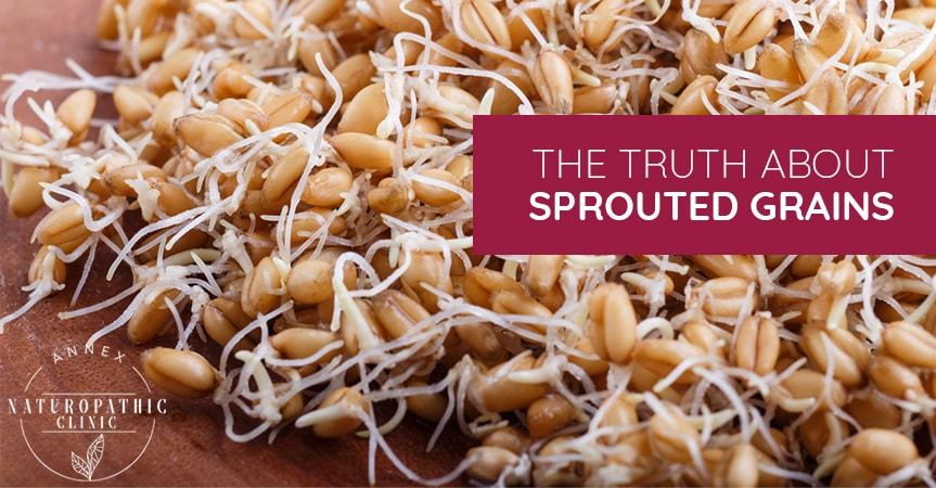 The Truth About Sprouted Grains | Annex Naturopathic Clinic | Toronto Naturopathic Doctors