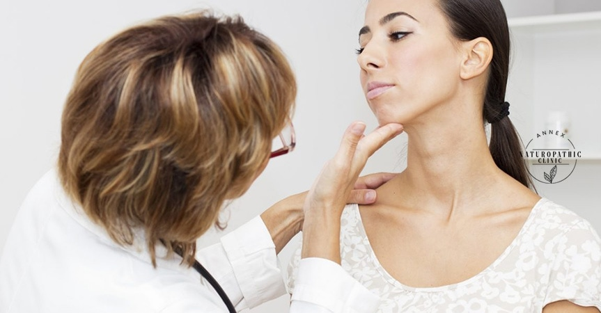 thyroid hormone examination | Annex Naturopathic Clinic | Toronto Naturopathic Doctors