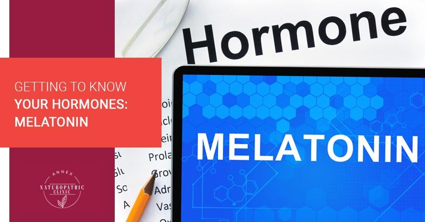 Getting To Know Your Hormones: Melatonin | Annex Naturopathic Clinic | Toronto Naturopathic Doctors